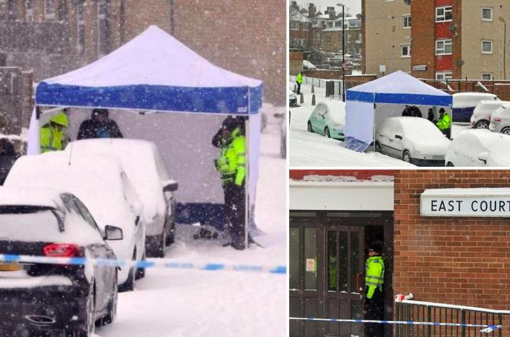 Beast From The East Cripples UK, Europe; Death Toll 55